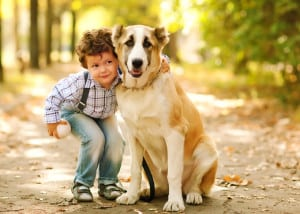 Kids and dogs safety - pawz for health dog training