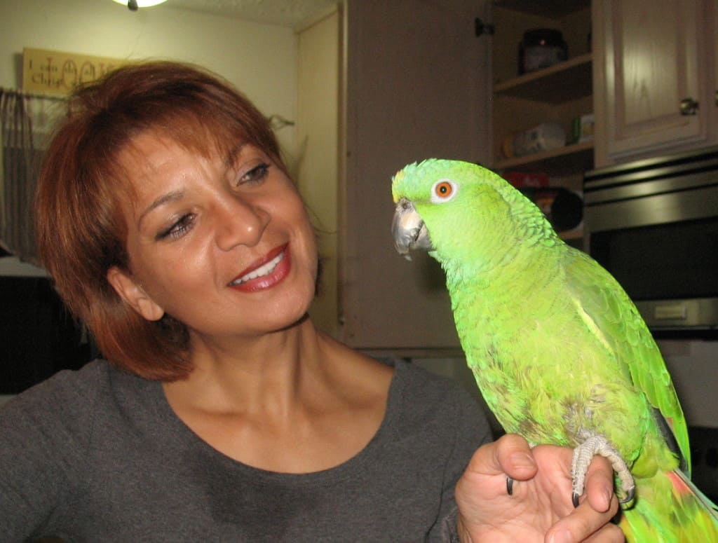 dog trainer with Amazon parrot