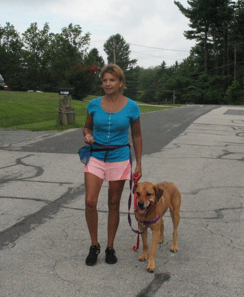 leash reactive dog training
